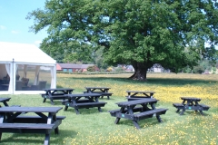 Garden benches and the marquee