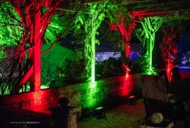 Bright-Red-And-Green-Lights-in-The-Dark