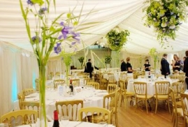 Gold Banqueting chairs in Marquee