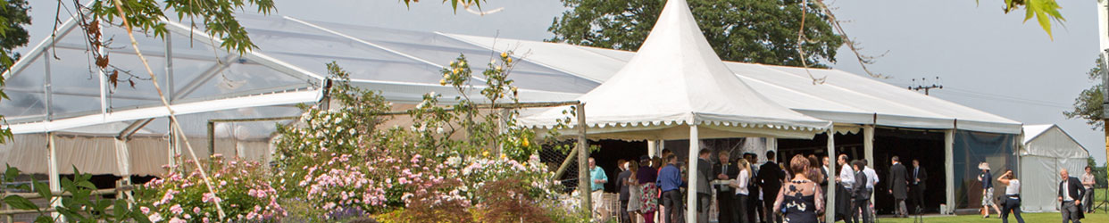 Exterior shot of clearspan marquee with foreground foliage
